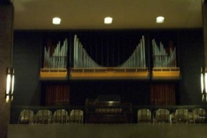 Normal Marsh Organ